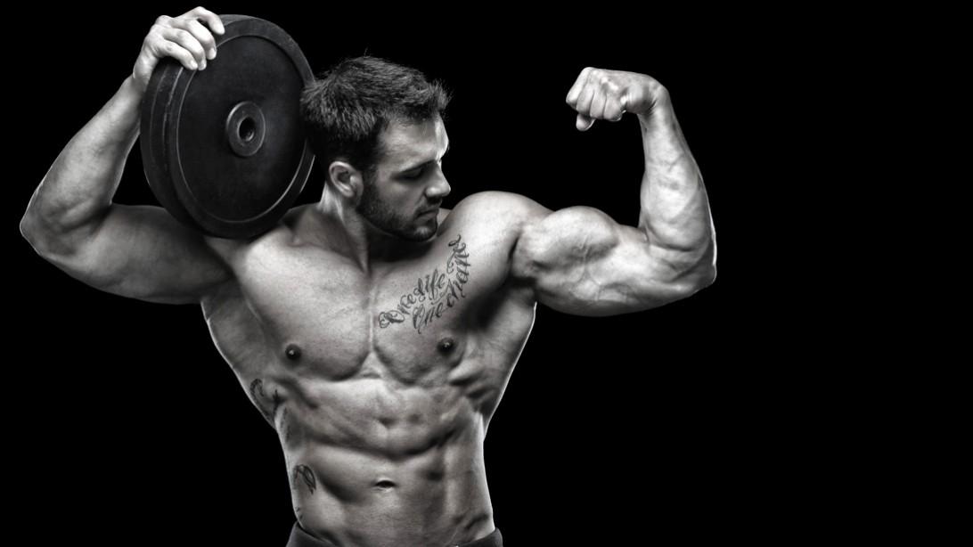 Rock Gym Body Building & Fitness